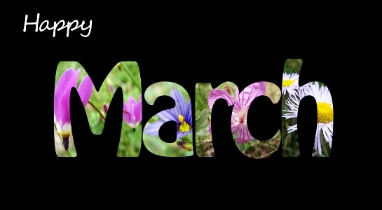Image result for happy new month march