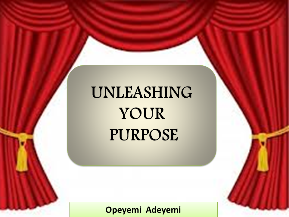 Unleashing Your Purpose by Opeyemi Adeyemi